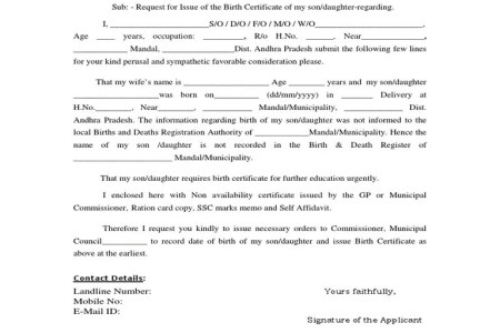 birth application form » Trending Arts and Entertainment | Arts and ...