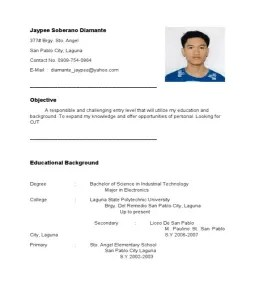 resume design career objectives on resumes sample objectives in