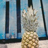 """Lav let din egen Ananas plante - en lille sjov """"gør det selv"""" video"""