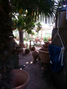Pottemagerens gårdhave i Torri del Benaco © iminhave.dk