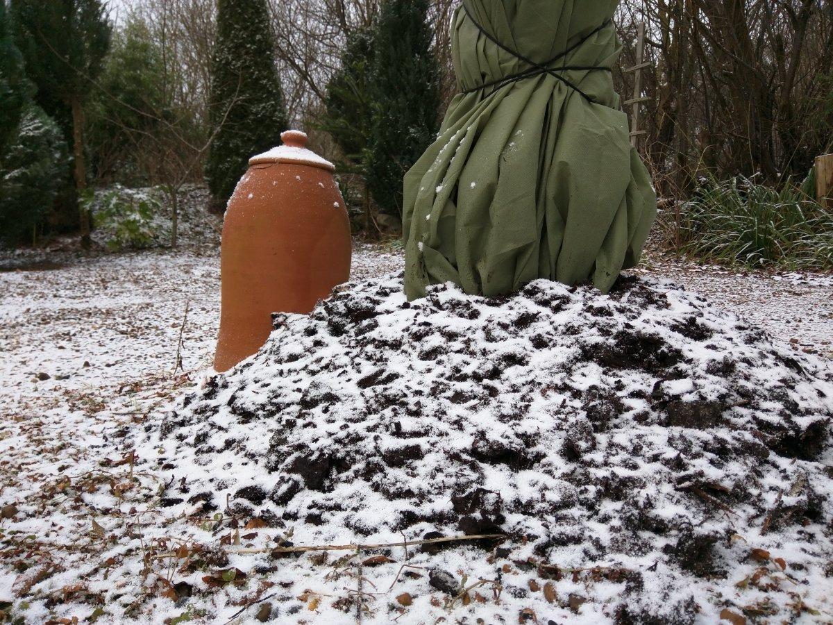 Frost på vej...nu hvor vi ventede forår?