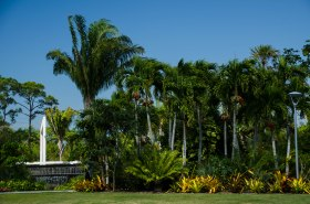 botanical gardens 239