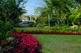 botanical gardens 254