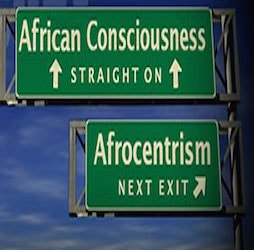 The Politics of African-centered and Socialist Approaches to Liberation