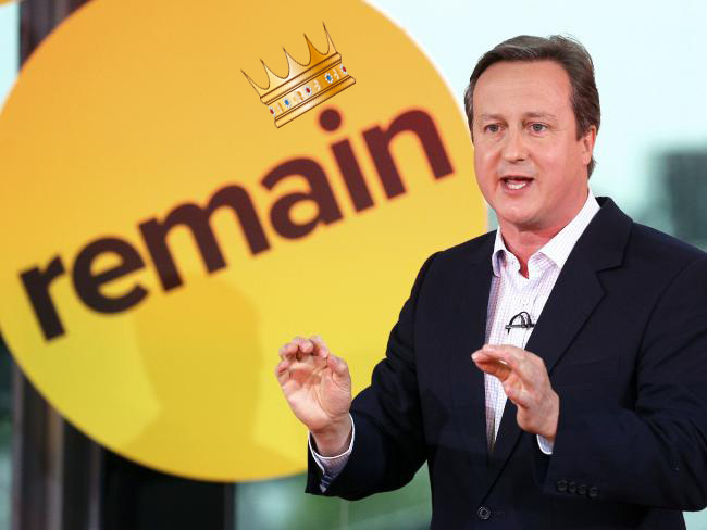 David Cameron in front of a remain icon | David Cameron's Legacy 8 | www.imjussayin.com