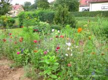 Garten in Bieringen