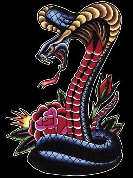 clmn-cobra-rose