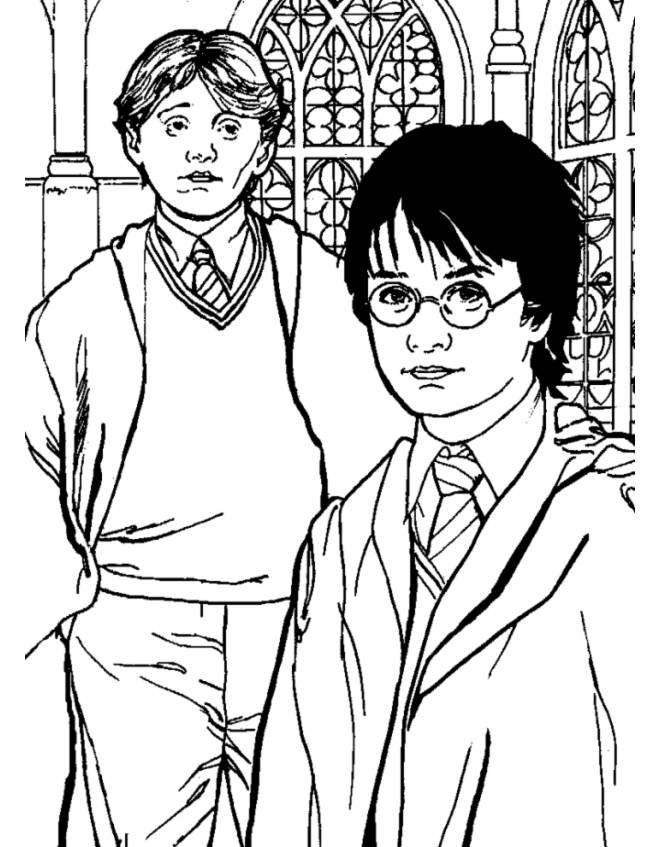 Disegno Di Rupert Grint Ed Harry Potter Da Colorare Per