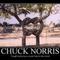 chuck norris e stato qui