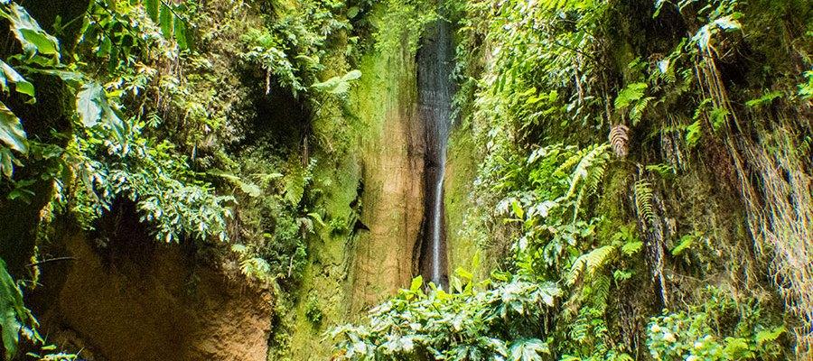 Salto do Rosal Grotte