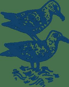 gull@2x-1-236x300.png