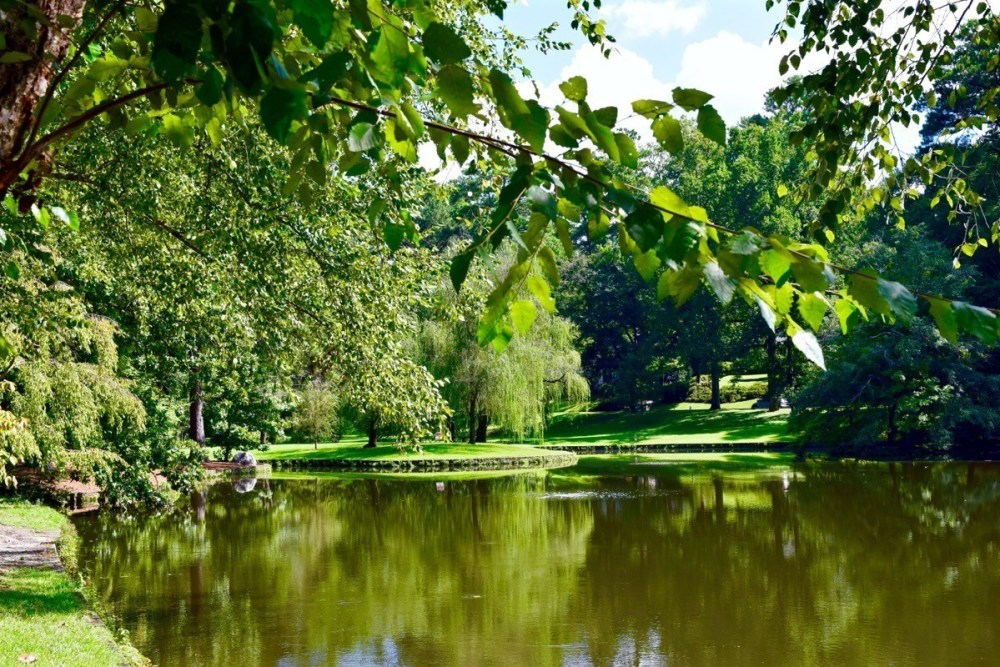Buckhead-Peachtree-Heights-East-Duck-Pond-DuckPond-Buckhead-Neighborhood-Atlanta-GA724.jpg