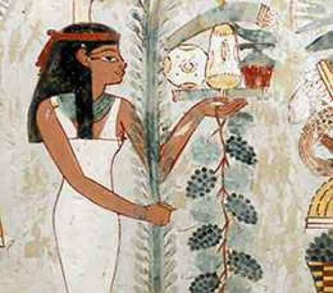 Antico Egitto a tavola, l'uva da vino