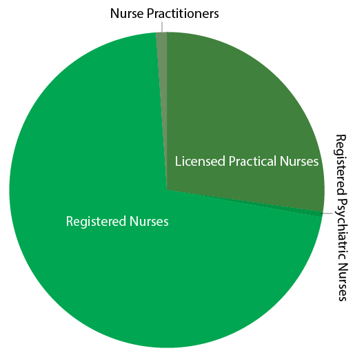 Regulated internationally educated nurses in Canada by profession