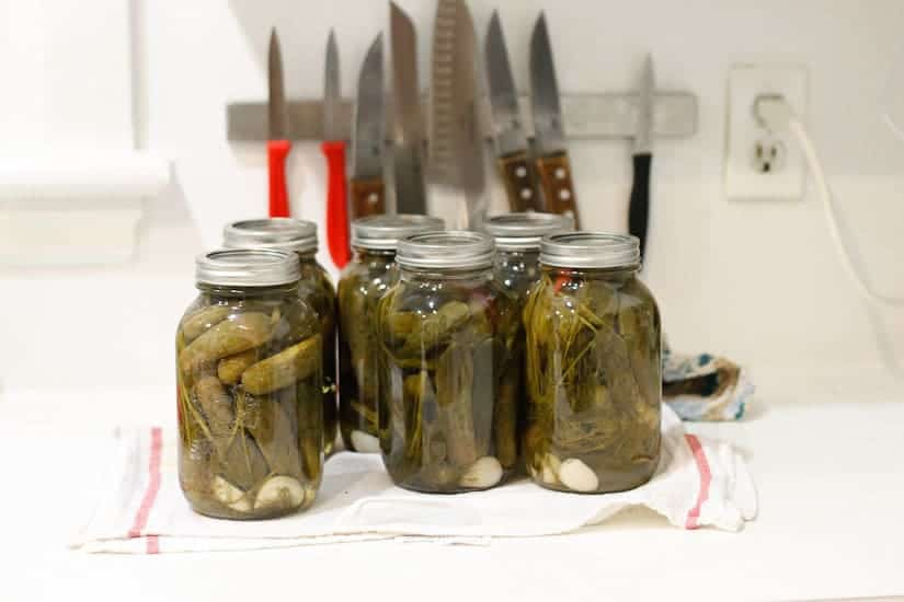 Spicy garlic dill pickles 16