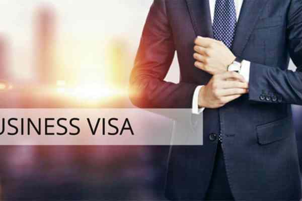 Sole Representative visa application