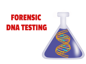 forensic dna testing services