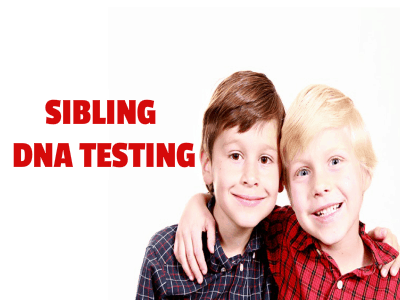 sibling dna test for families