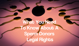sperm donors legal rights