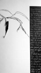 15 Laure Chagnon