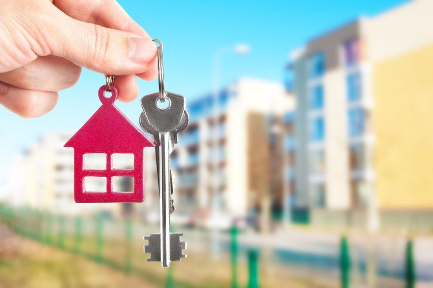 Gestion locative : le bail d'habitation et les obligations du professionnel