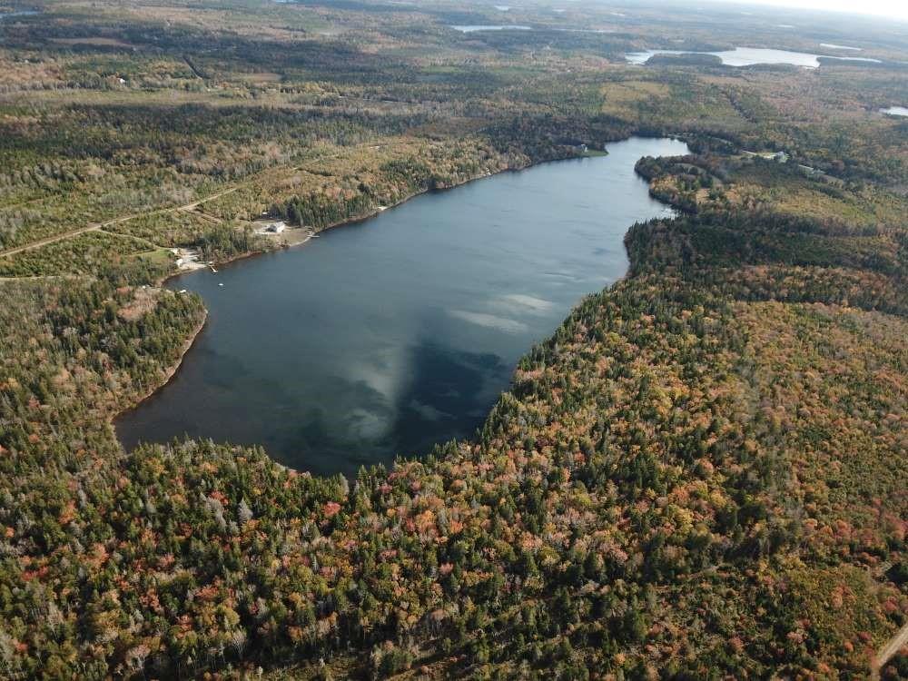 Doctors Lake ist ein Clearwater Lake und gehört zur Ortschaft Springdale