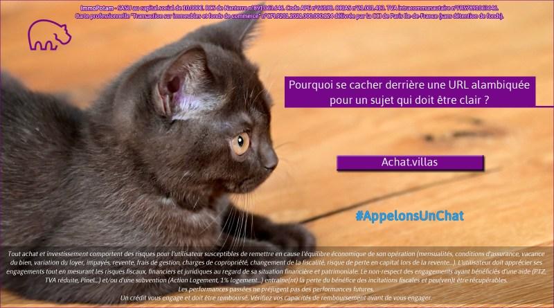 ImmoPotam-appelons-un-chat-Achat-villas-immobilier-maison-appartement-neuf-vefa-logement-ancien-gestion-patrimoine-1p-2p-3p-4p-5p