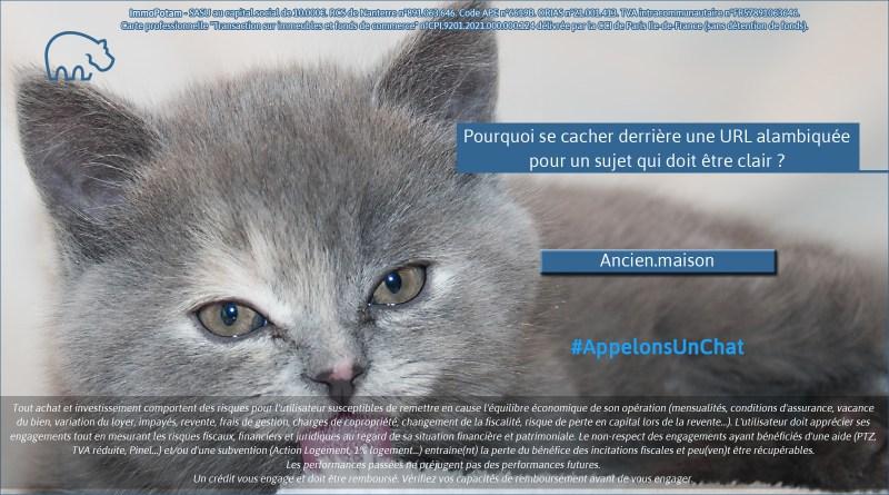 ImmoPotam-appelons-un-chat-Ancien-maison-immobilier-maison-appartement-neuf-vefa-logement-ancien-gestion-patrimoine-1p-2p-3p-4p-5p
