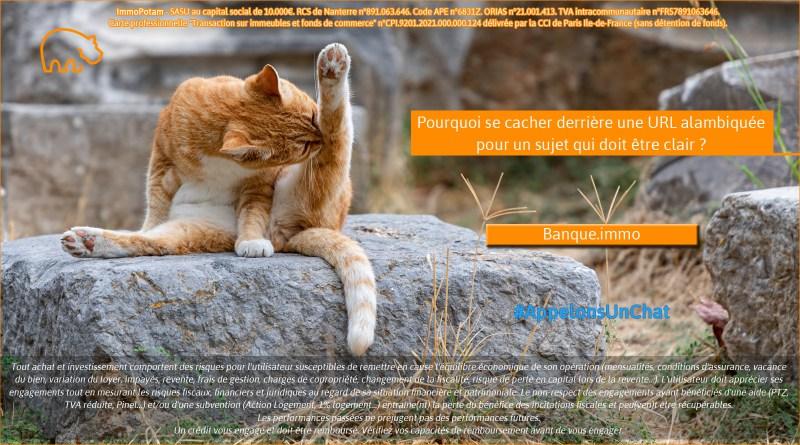 ImmoPotam-appelons-un-chat-Banque-immo-immobilier-maison-appartement-neuf-vefa-logement-ancien-gestion-patrimoine-1p-2p-3p-4p