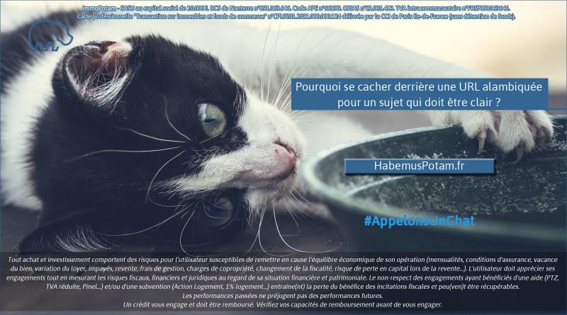 ImmoPotam-appelons-un-chat-HabemusPotam-fr-immobilier-maison-appartement-neuf-vefa-logement-ancien-gestion-patrimoine-1p-2p-3p-4p