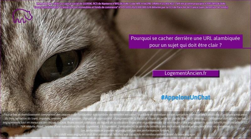 ImmoPotam-appelons-un-chat-LogementAncien-fr-immobilier-maison-appartement-neuf-vefa-logement-ancien-gestion-patrimoine-1p-2p-3p
