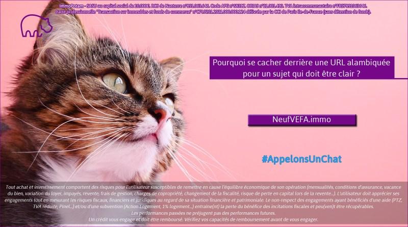 ImmoPotam-appelons-un-chat-NeufVEFA-immo-immobilier-maison-appartement-neuf-vefa-logement-ancien-gestion-patrimoine-1p-2p-3p