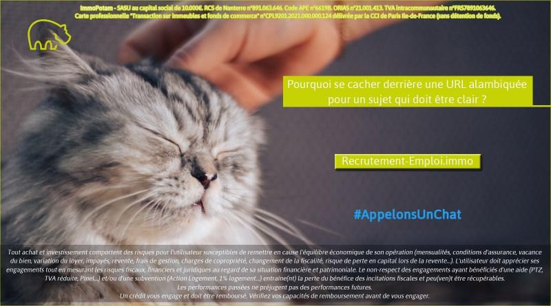 ImmoPotam-appelons-un-chat-Recrutement-Emploi-immo-immobilier-maison-appartement-neuf-vefa-logement-ancien-gestion-patrimoine-1p