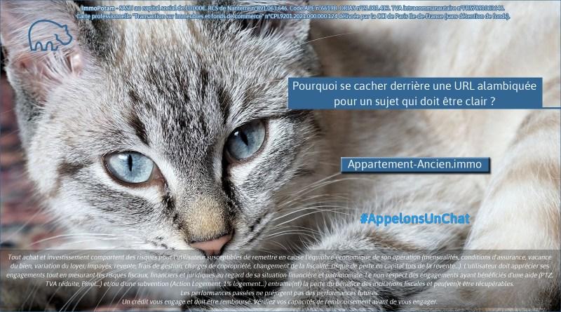 ImmoPotam-appelons-un-chat-Appartement-Ancien-immo-immobilier-maison-appartement-neuf-vefa-logement-ancien-gestion-patrimoine-1p