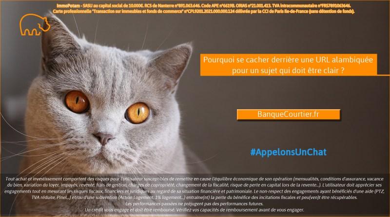 ImmoPotam-appelons-un-chat-BanqueCourtier-fr-immobilier-maison-appartement-neuf-vefa-logement-ancien-gestion-patrimoine-1p-2p-3p