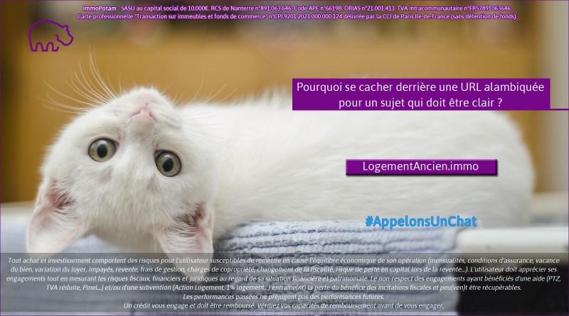 ImmoPotam-appelons-un-chat-LogementAncien-immo-immobilier-maison-appartement-neuf-vefa-logement-ancien-gestion-patrimoine-1p-2p-3p