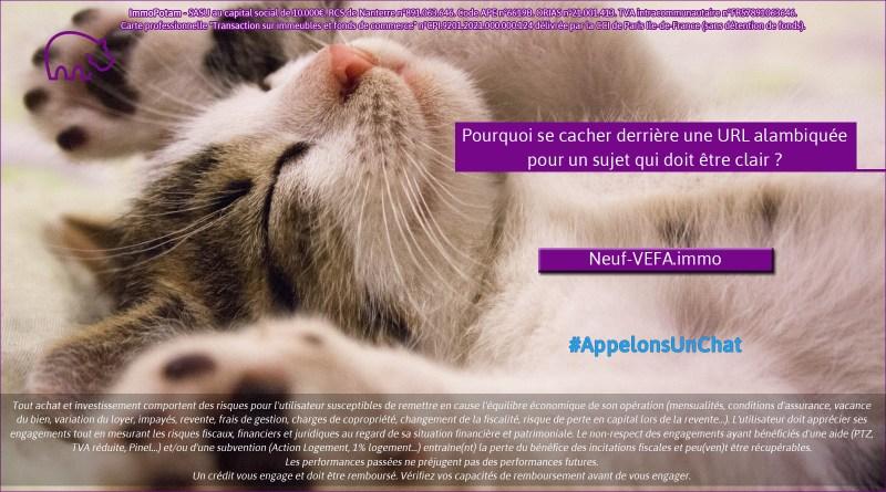 ImmoPotam-appelons-un-chat-Neuf-VEFA-immo-immobilier-maison-appartement-neuf-vefa-logement-ancien-gestion-patrimoine-1p-2p-3p-4p-5p