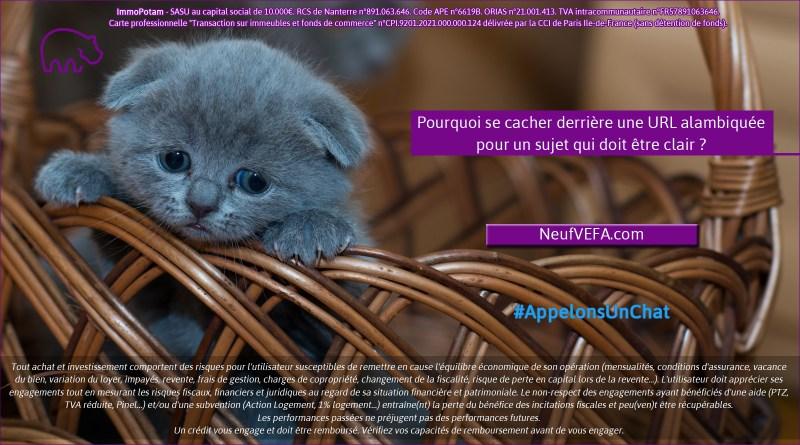 ImmoPotam-appelons-un-chat-NeufVEFA-com-immobilier-maison-appartement-neuf-vefa-logement-ancien-gestion-patrimoine-1p-2p-3p-4p-5p
