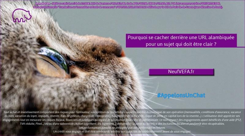 ImmoPotam-appelons-un-chat-NeufVEFA-fr-immobilier-maison-appartement-neuf-vefa-logement-ancien-gestion-patrimoine-1p-2p-3p-4p-5p