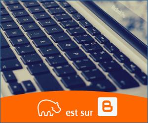 Bannière Blogger - 300x250 px - 10092021-5