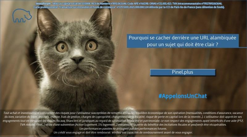 ImmoPotam-appelons-un-chat-Pinel-plus-immobilier-maison-appartement-neuf-vefa-logement-ancien-gestion-patrimoine-1p-2p-3p-4p-5p