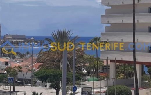3151K - Playa Las Americas