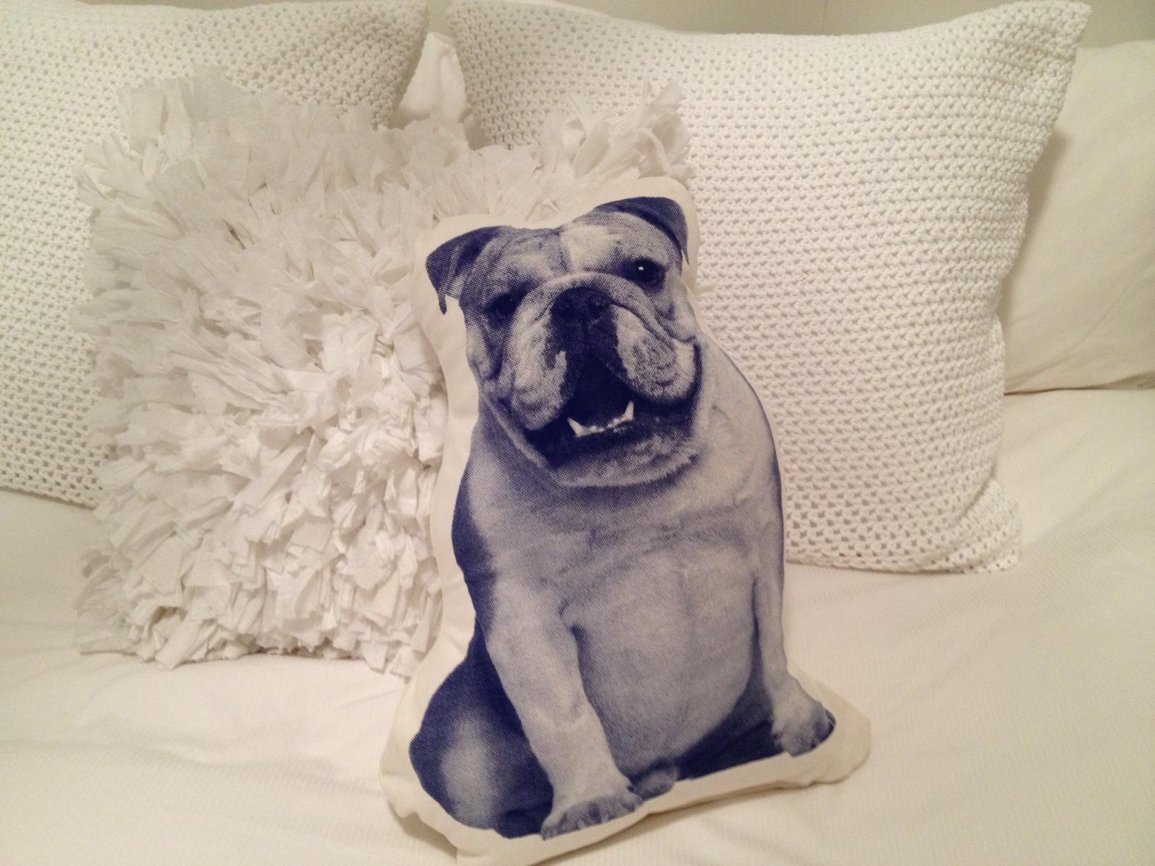 Ross Menuez Pillows