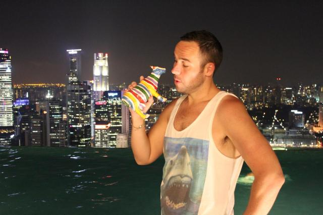 Singapore Night Skyline (2) (Large)