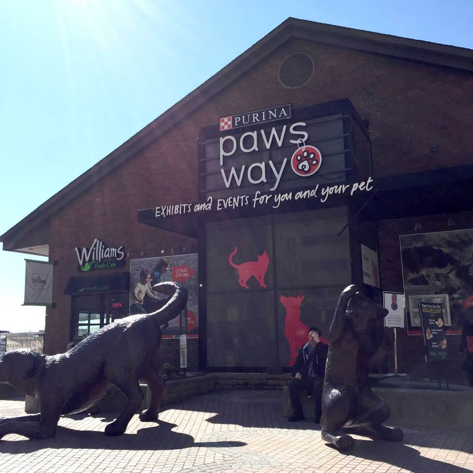 purina_PawsWay_building