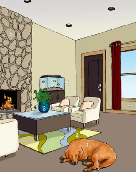 Most Common Problem Areas May Contribute to Mold Growth