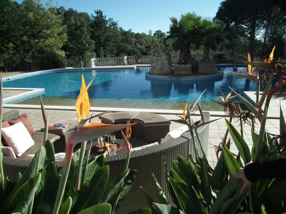 villa with pool for sale Monchique Portugal
