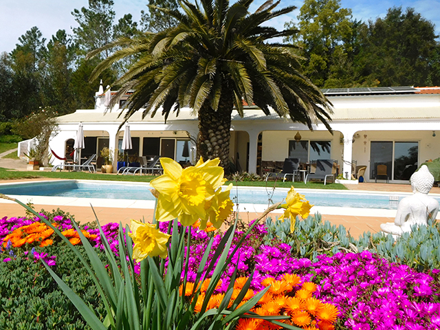 for sale large villa with pool Monchique Portugal
