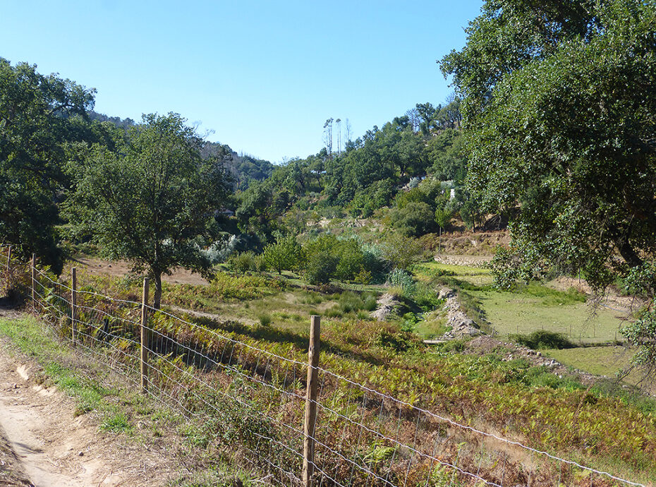 Imochique Real Estate Terrain for sale