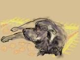 Copy of an original iPad drawing by artist Helen Imogen Field created live